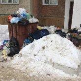 Спецмашины не вывозят мусор от жилых домов в Павлодаре