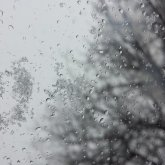 На юге пройдут дожди, на севере – мокрый снег