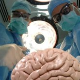 В Казахстане родители решили вылечить гомосексуальность сына с помощью операции на мозге