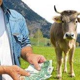 Поставщик из России «кинул» казахстанских фермеров на сотни миллионов
