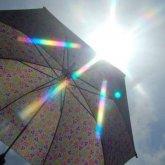 На севере и в центре Казахстана пройдут дожди, на западе ожидается жара