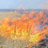 Четвертые сутки тушат степной пожар в Жамбылской области