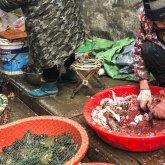 Доказательства вспышки коронавируса в Ухане были уничтожены – китайский врач