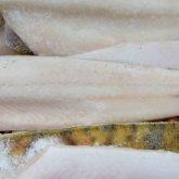 Казахстан экспортирует рыбную продукцию в 36 государств мира