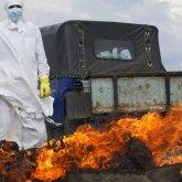 Птичий грипп: компенсации от властей шокировали сельчан