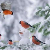 Снег, гололед и ветер ожидают казахстанцев