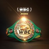 Сразу два казахстанца номинированы на звание лучших боксеров по версии WBC