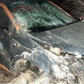 Парни взяли в аренду авто и врезались на нем в дерево в Алматы