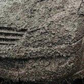 Автомобиль павлодарки облили нечистотами
