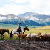 «Южанин на севере как слепой котенок». Почему адаптация в Казахстане все еще проблема?