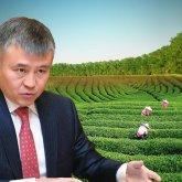 «Собрали прикормленных»: члены Комиссии по земельной реформе ответили на критику