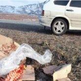 Мужчина не смог продать мясо и выкинул его возле трассы в ВКО