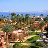 Казахстанцы оставили больного коронавирусом сына в Египте