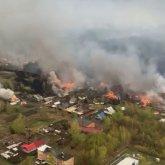 Лесной пожар в Риддере. Полицейские нашли обгоревший труп пожилой женщины