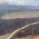 Лесной пожар полностью ликвидирован в Риддере