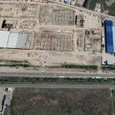 Крупное предприятие обвинили в вырубке сотен деревьев под Алматы