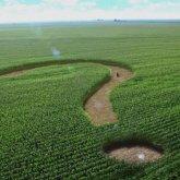 Продление моратория на продажу земель казахстанцам одобрили депутаты Мажилиса