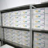 Казахстан готов экспортировать вакцину QazVac за рубеж – Токаев
