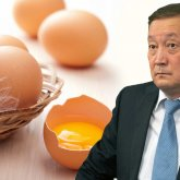Делили по блату? Министру грозят санкции за яйца