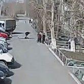 В Сети появилось видео конфликта, после которого умер карагандинский активист