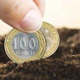 Земельный налог в Казахстане будет передан в местные бюджеты