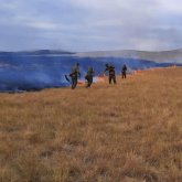 Грозовые разряды и люди являются главными причинами природных пожаров в РК