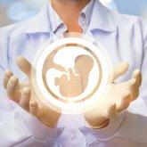Бесплатное ЭКО в Казахстане: особенности процедуры и шансы на успех