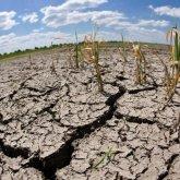 Страшными кадрами последствий засухи поделился актауский блогер