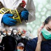 Суперраспространитель коронавируса:  один человек заразил 1,5 тысячи