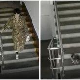 Женщина жестоко пинала котенка в Нур-Султане и попала на видео