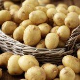 Картофель подешевел на 64%. В Минторговли заявили о снижении цен на продукты в РК