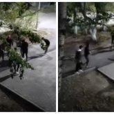Толпа избивала упавшего человека в Темиртау: видео жестокой драки появилось в Сети