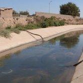Сельчане уже несколько лет пьют воду из канала в Туркестанской области