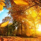 Осадки прекратятся, но похолодает: прогноз погоды на выходные в Казахстане