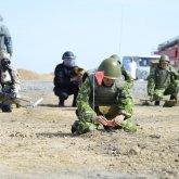 Казахстан отказывается принимать участие в гуманитарных операциях по разминированию в третьих странах