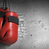 Никто не жаловался: в КФБ ответили на шокирующее заявление боксерши