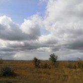 Штормовое предупреждение объявлено в Нур-Султане и 10 областях Казахстана