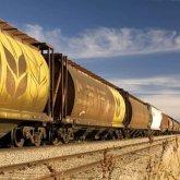 Продолжает ли Казахстан экспорт муки и зерна в Афганистан?