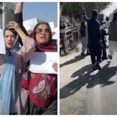 Талибы избили журналистов в Кабуле