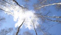Какой будет погода в марте в Казахстане