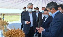Президент осмотрел сельхозугодья Акмолинской области