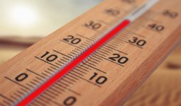 30-градусная жара придет на север Казахстана