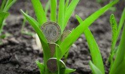 Еще один налог для аграриев предложили ввести в Казахстане