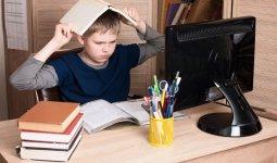 «Неужели шмотки важнее образования?»: мальчик потребовал от министра открыть школы