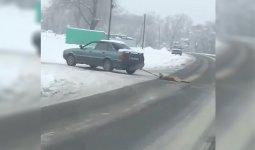«Привязал собаку к машине и протащил по дороге»: казахстанцев шокировало видео