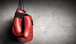 «Каждый казах рождается боксером»: казахстанец предложил устраивать бои знаменитостей