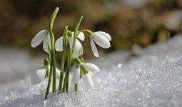 Какой будет погода в марте в Казахстане, рассказали синоптики