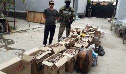 Казах из Синьцзяна тоннами вывозил сайгачьи рога из Казахстана в Китай