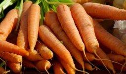 735 тенге за килограмм: «золотую» морковь продают в Кызылорде