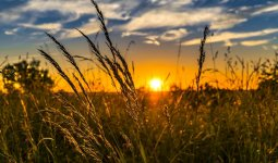 Какая погода ожидает казахстанцев 20 июля
